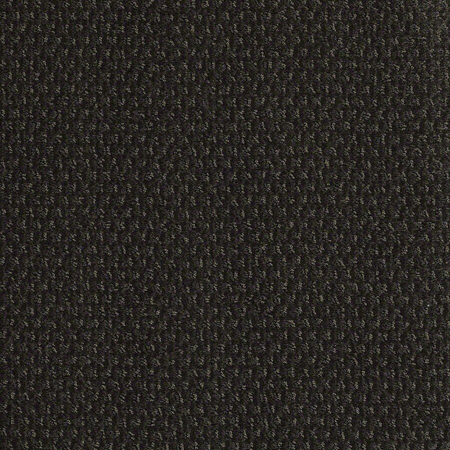 STAINMASTER St Thomas Active Family Cilantro Cut and Loop Carpet Sample