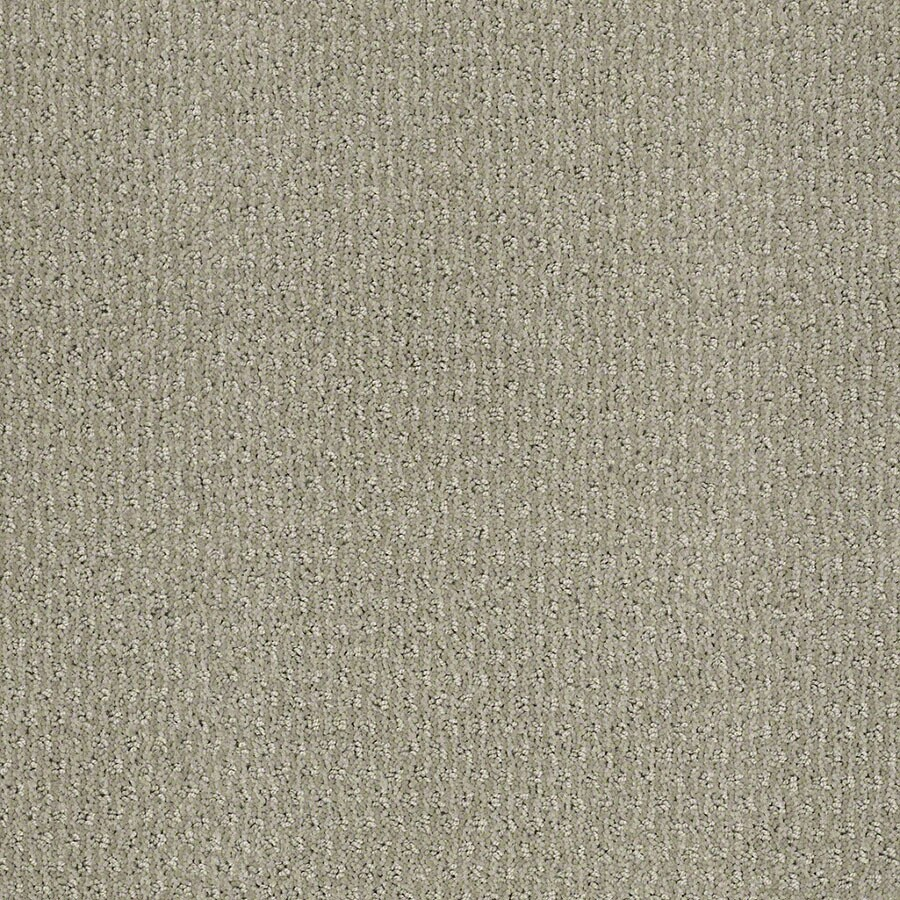 Shop STAINMASTER Active Family St Thomas Moonstruck Carpet ...