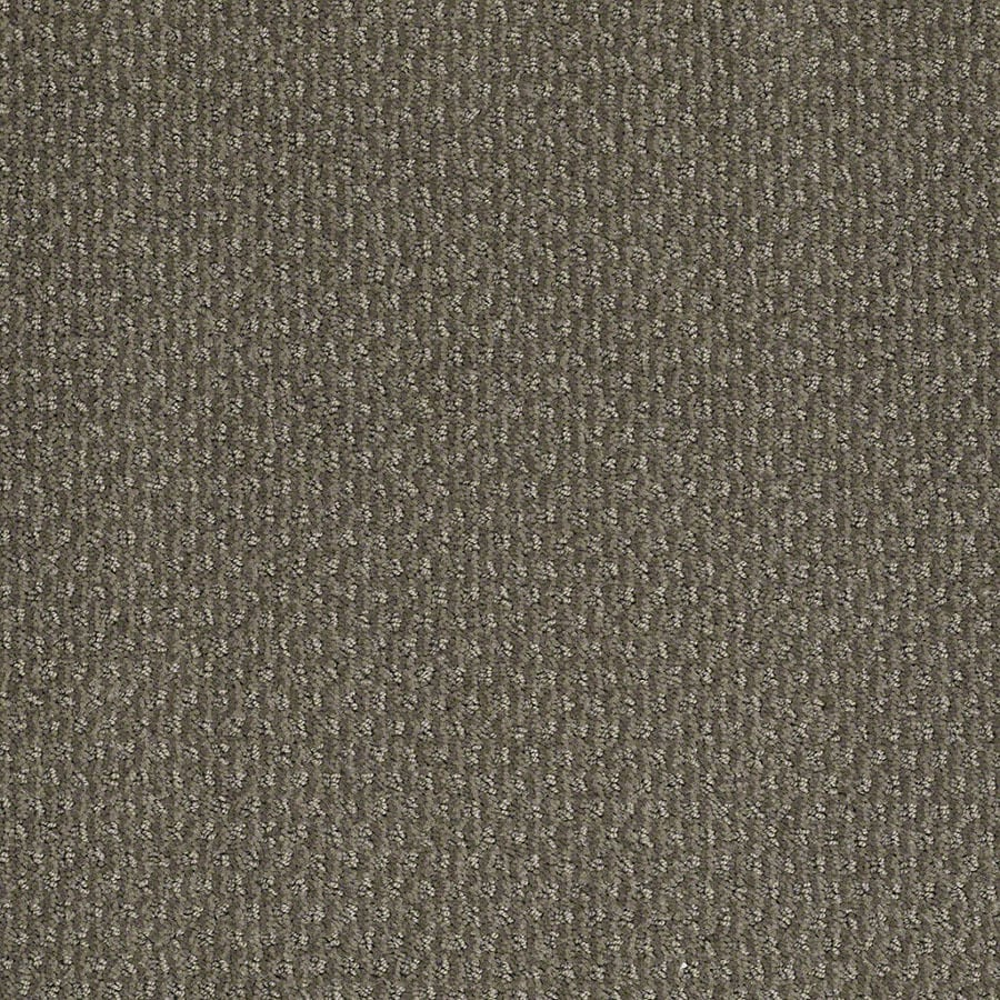 STAINMASTER St Thomas Active Family Tradewinds Cut and Loop Carpet Sample