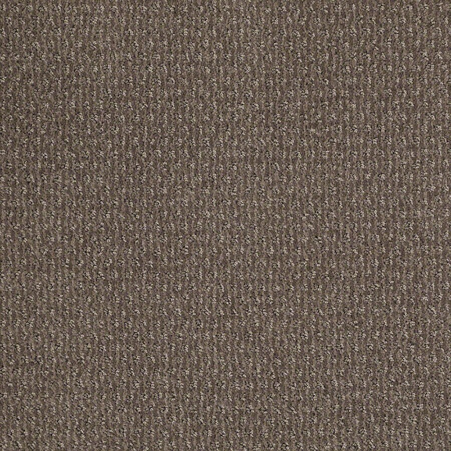STAINMASTER St Thomas Active Family Glacial Rock Cut and Loop Carpet Sample
