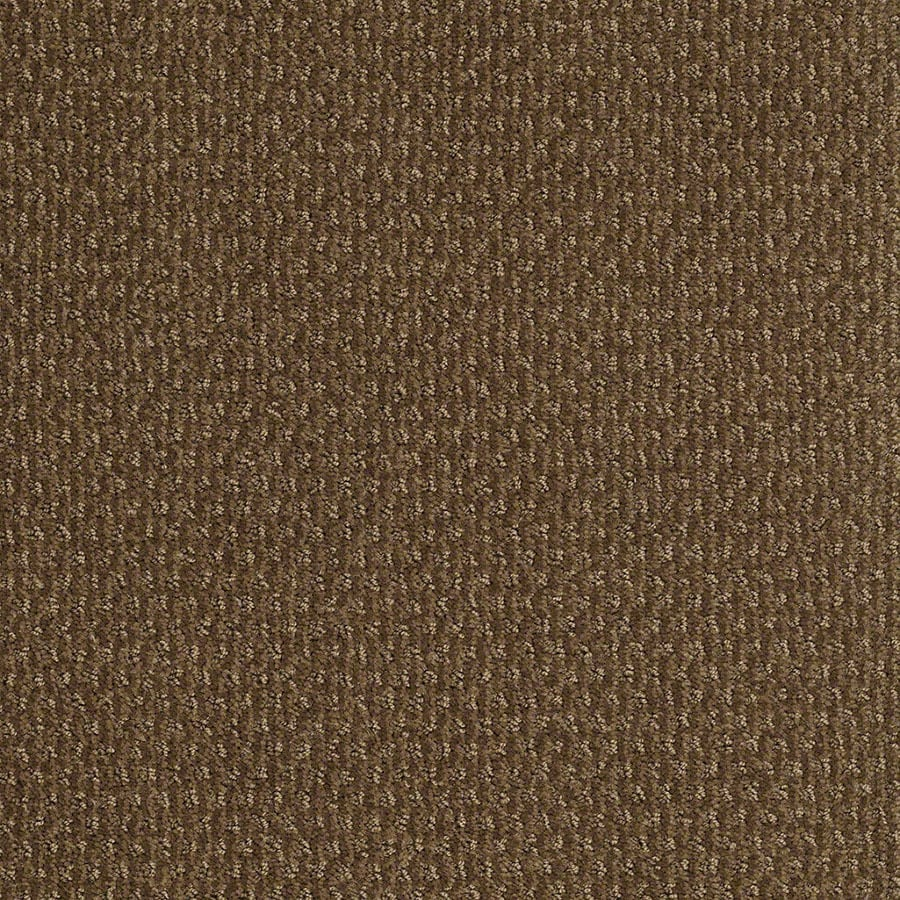 STAINMASTER St Thomas Active Family Toasted Coconut Cut and Loop Carpet Sample