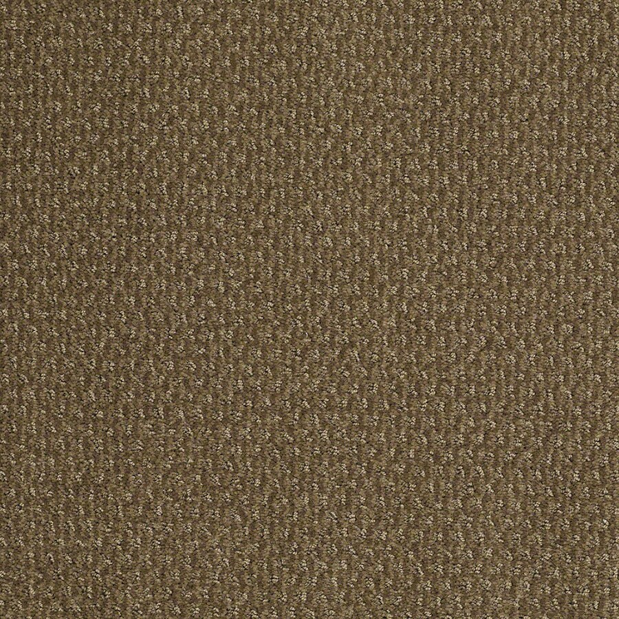 STAINMASTER Active Family St Thomas Safari Vest Carpet Sample