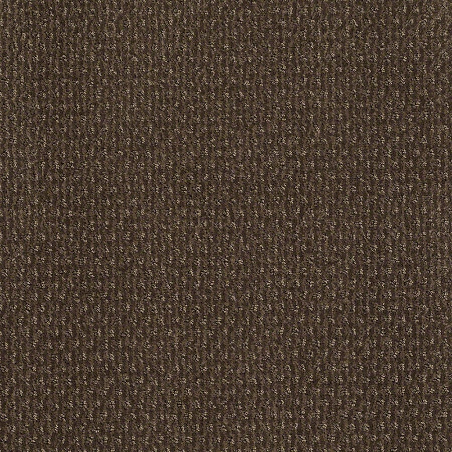 STAINMASTER St Thomas Active Family Timberline Cut and Loop Carpet Sample
