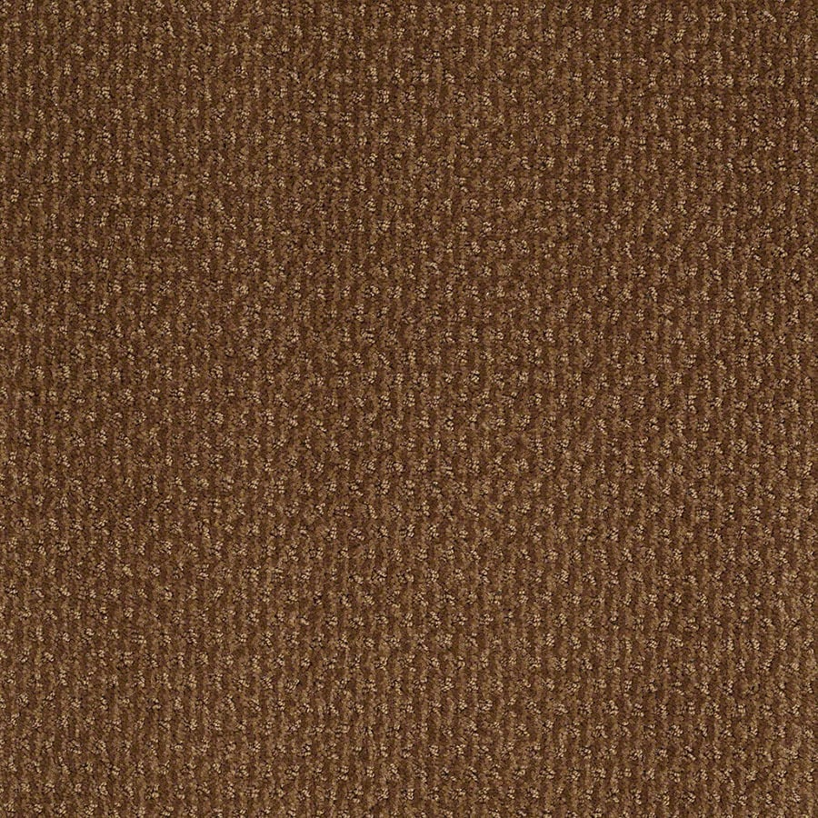 STAINMASTER Active Family St Thomas Roman Brick Berber/Loop Carpet Sample