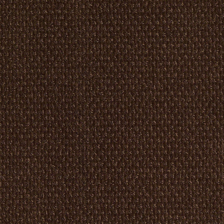 STAINMASTER St Thomas Active Family Nutmeg Cut and Loop Carpet Sample