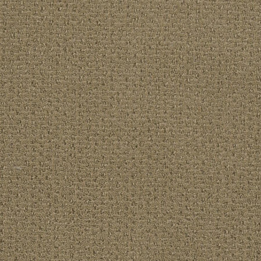 STAINMASTER Active Family St Thomas Marzipan Berber/Loop Carpet Sample