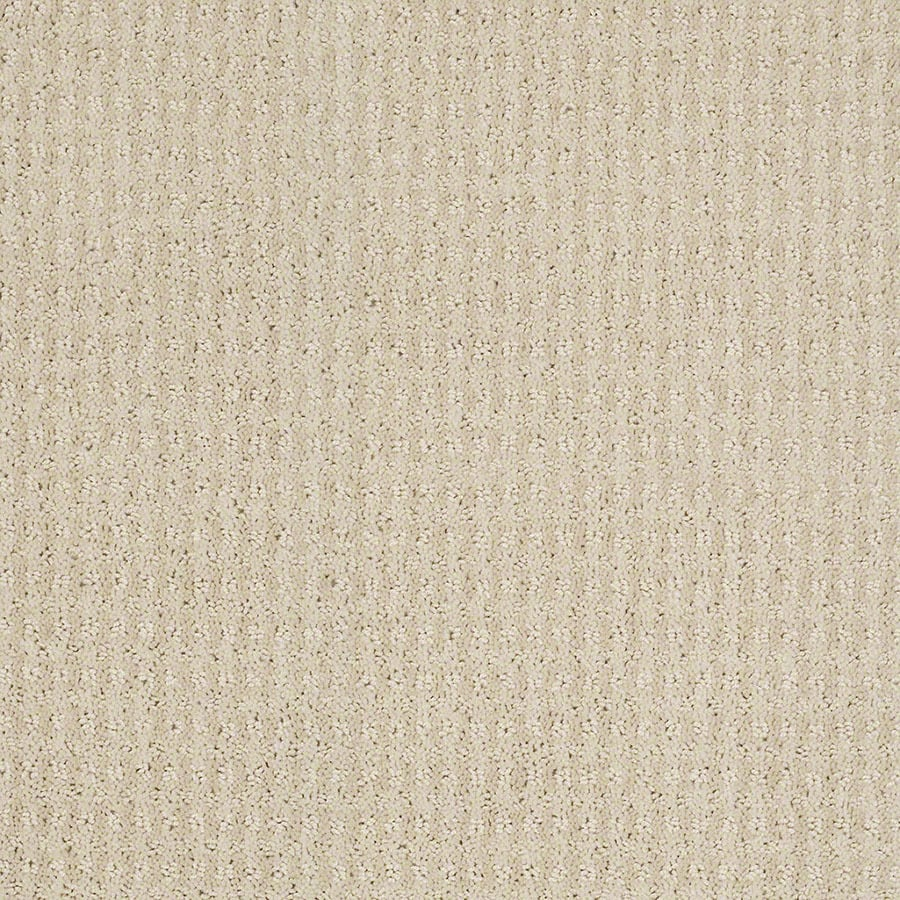 STAINMASTER St John Active Family Macadamia Cut and Loop Carpet Sample