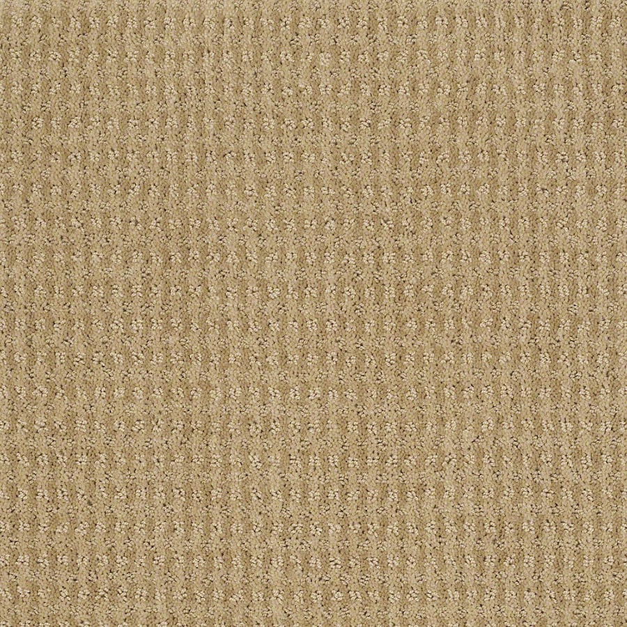 STAINMASTER St John Active Family Golden Fleece Cut and Loop Carpet Sample