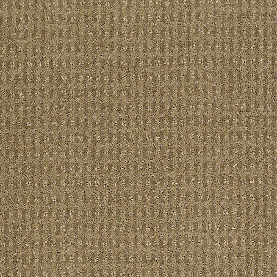 STAINMASTER St John Active Family Sahara Sun Cut and Loop Carpet Sample