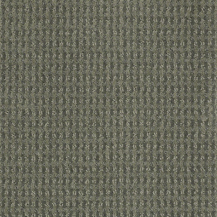 STAINMASTER St John Active Family Agave Green Cut and Loop Carpet Sample