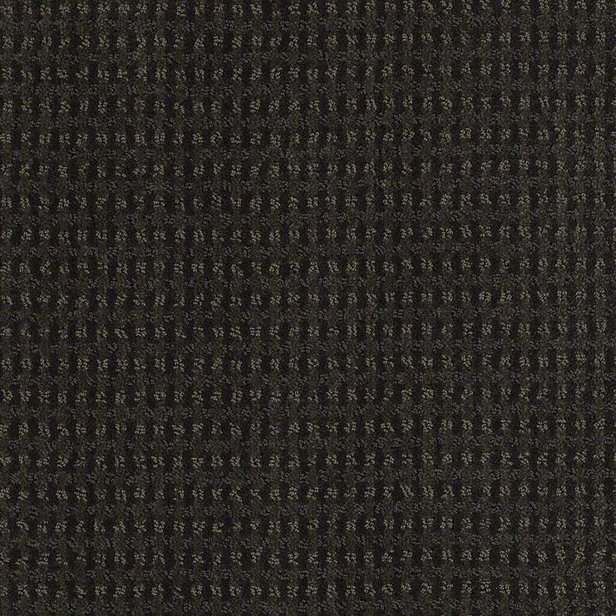 STAINMASTER Active Family St John Cilantro Berber/Loop Carpet Sample