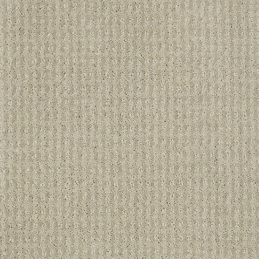 STAINMASTER St John Active Family Oyster Cut and Loop Carpet Sample