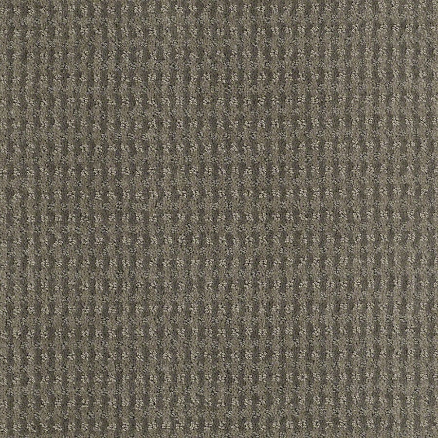 STAINMASTER St John Active Family Tradewinds Cut and Loop Carpet Sample