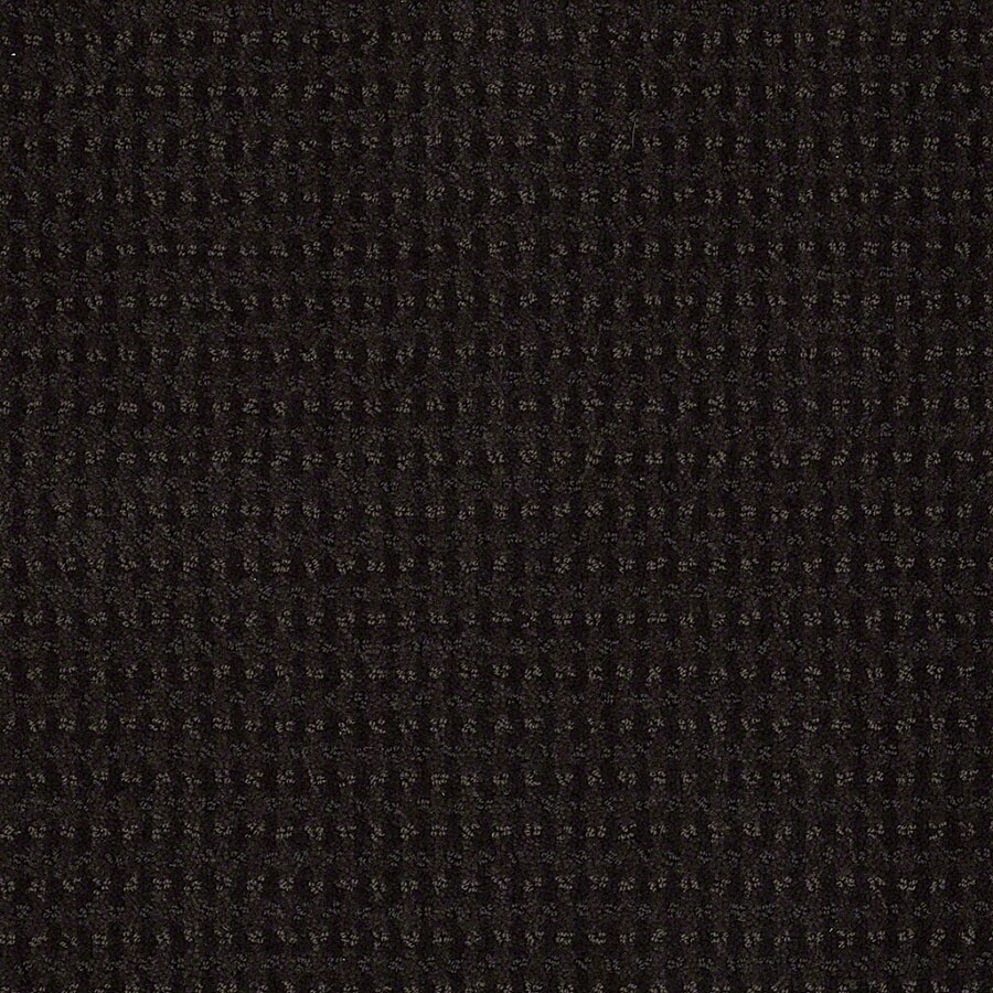 STAINMASTER St John Active Family Meteorite Cut and Loop Carpet Sample