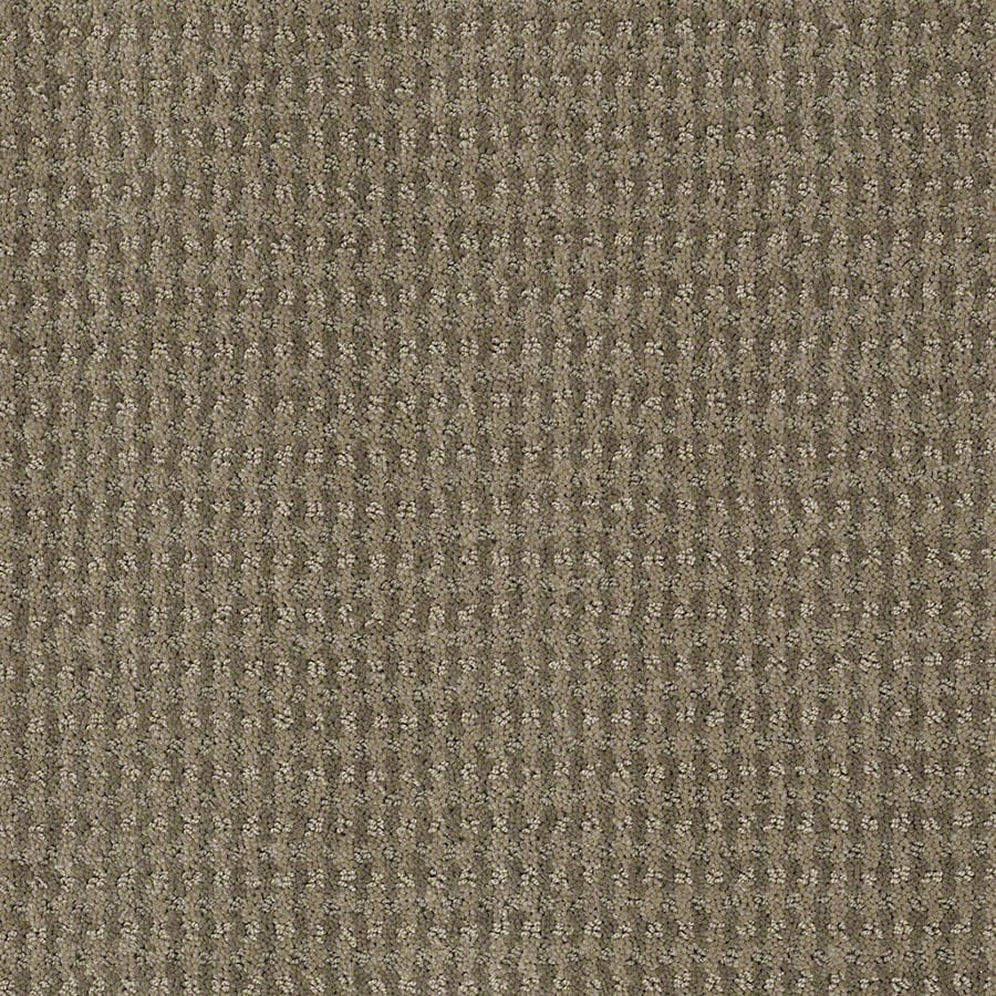 STAINMASTER St John Active Family Greige Cut and Loop Carpet Sample