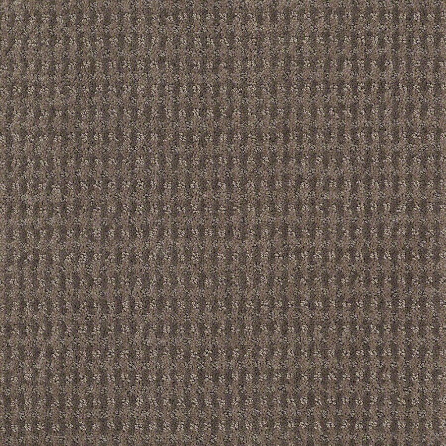 STAINMASTER St John Active Family Glacial Rock Cut and Loop Carpet Sample
