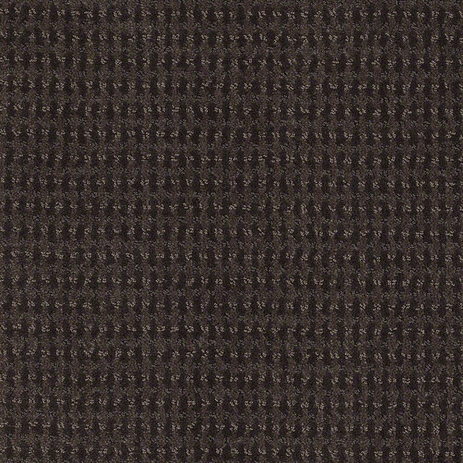 STAINMASTER Active Family St John Falcon Carpet Sample