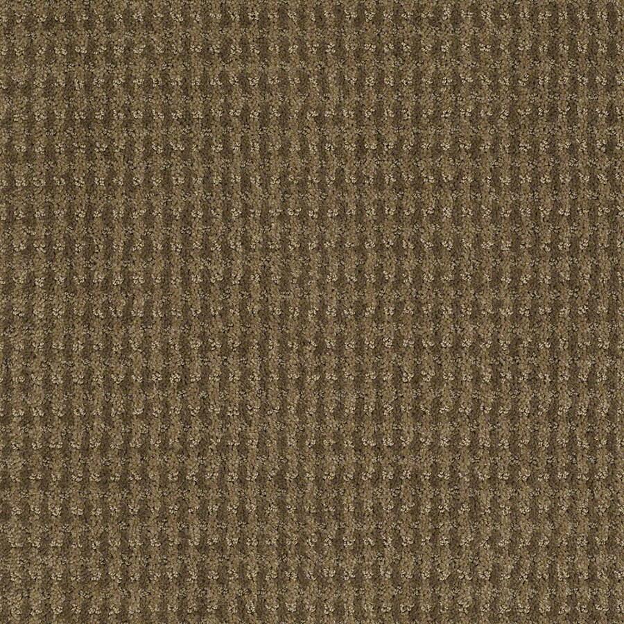 STAINMASTER St John Active Family Safari Vest Cut and Loop Carpet Sample