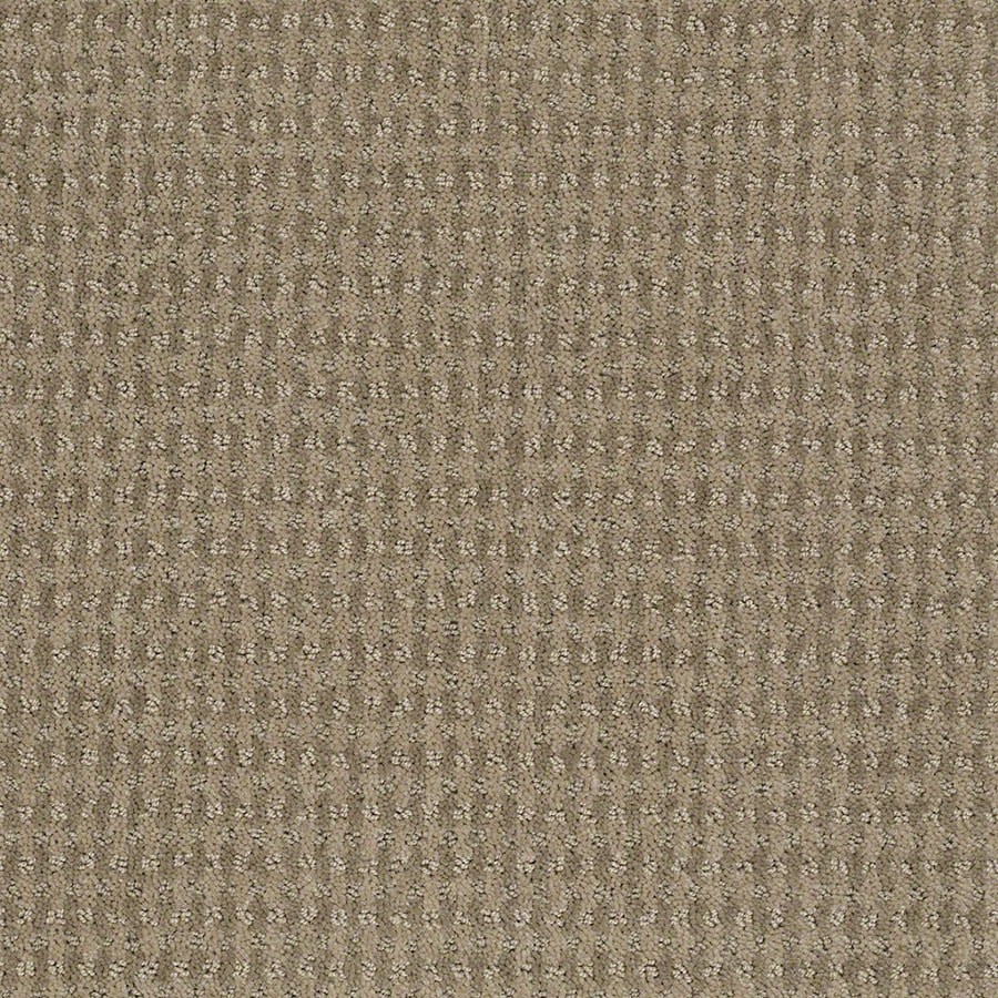 STAINMASTER Active Family St John Hazy Berber/Loop Carpet Sample