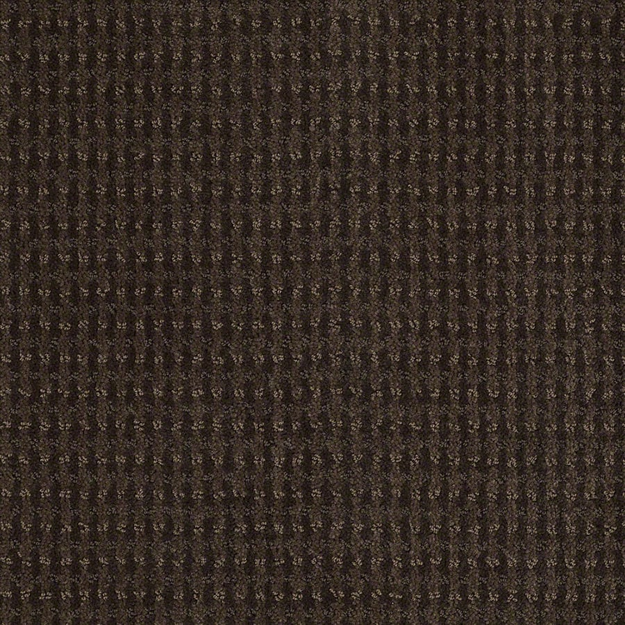 STAINMASTER St John Active Family Dark Earth Cut and Loop Carpet Sample