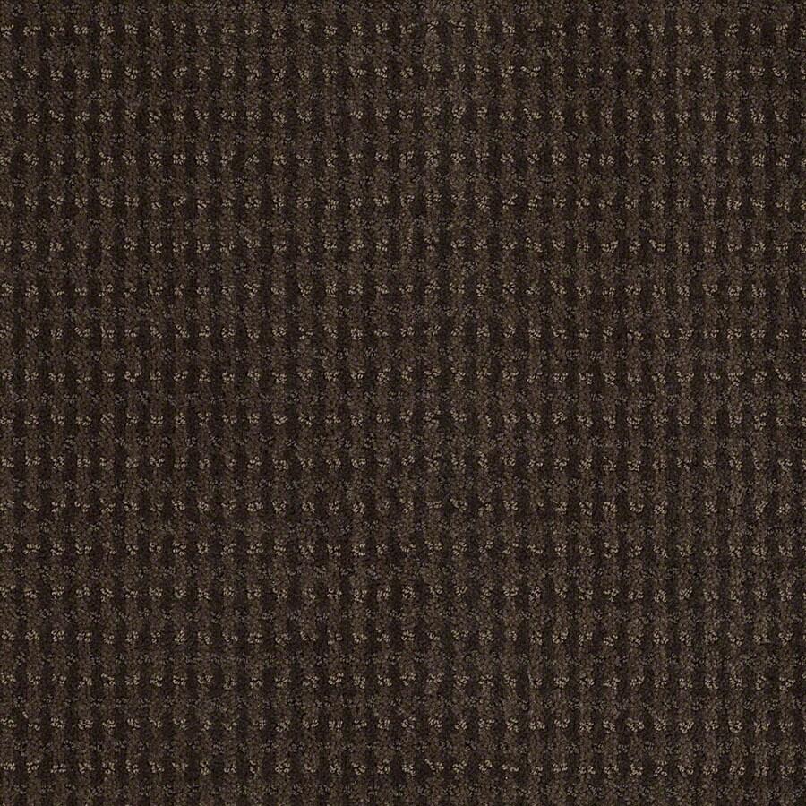STAINMASTER Active Family St John Dark Earth Carpet Sample