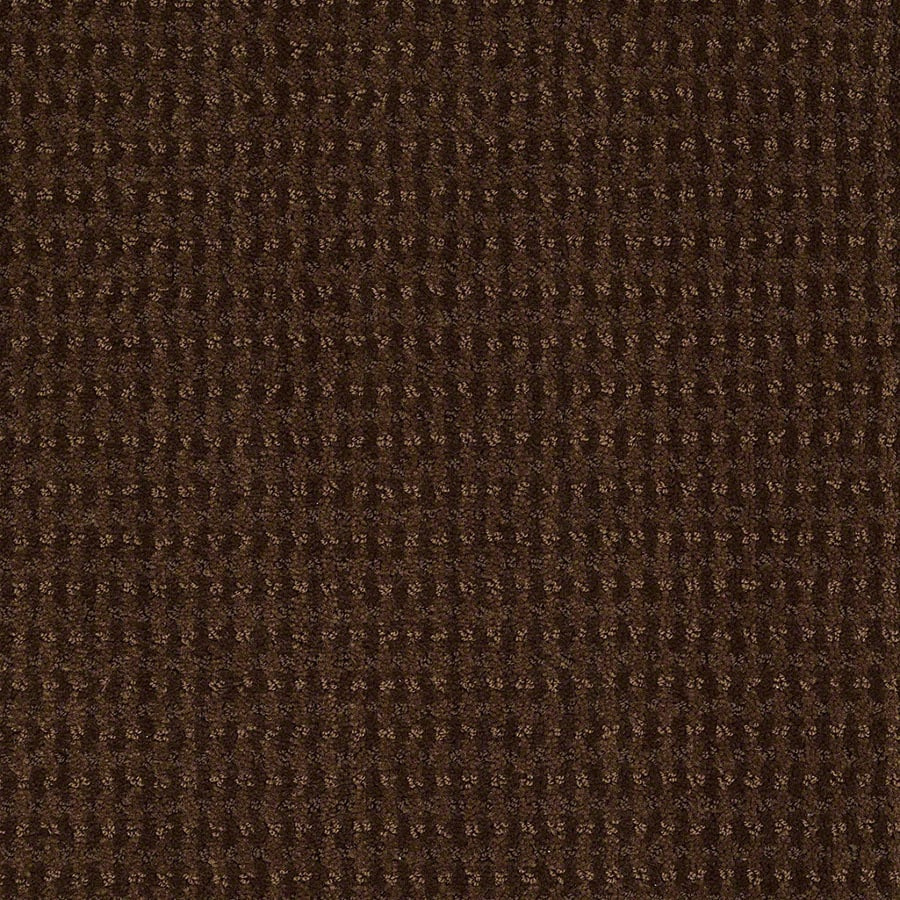 STAINMASTER Active Family St John Nutmeg Berber/Loop Carpet Sample