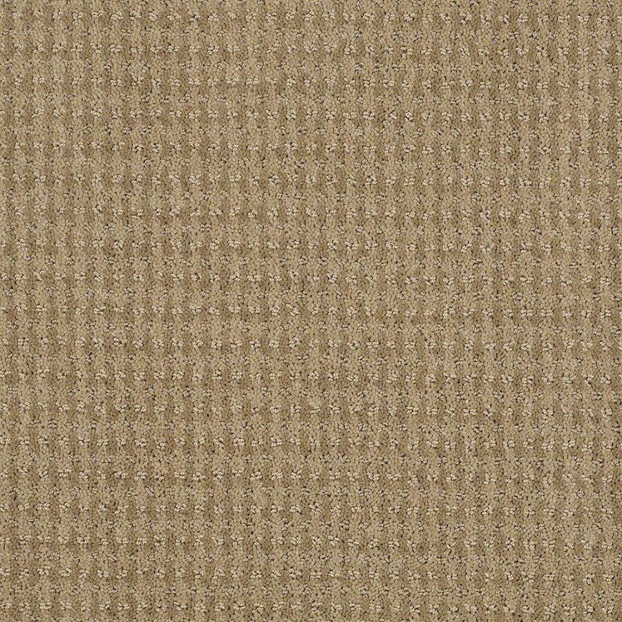 STAINMASTER St John Active Family Marzipan Cut and Loop Carpet Sample