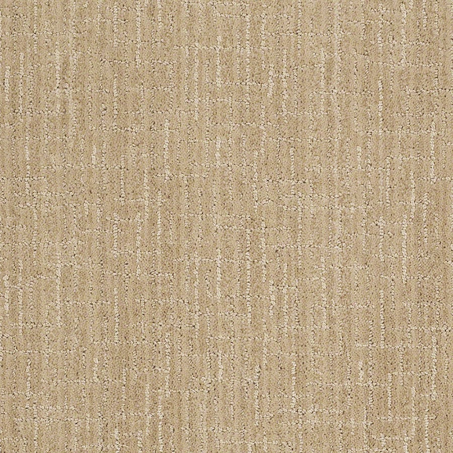 STAINMASTER Active Family Unquestionable Cashmere Sweatr Berber/Loop Carpet Sample