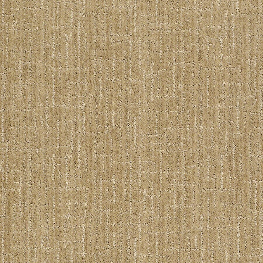 STAINMASTER Unquestionable Active Family Banana Split Cut and Loop Carpet Sample