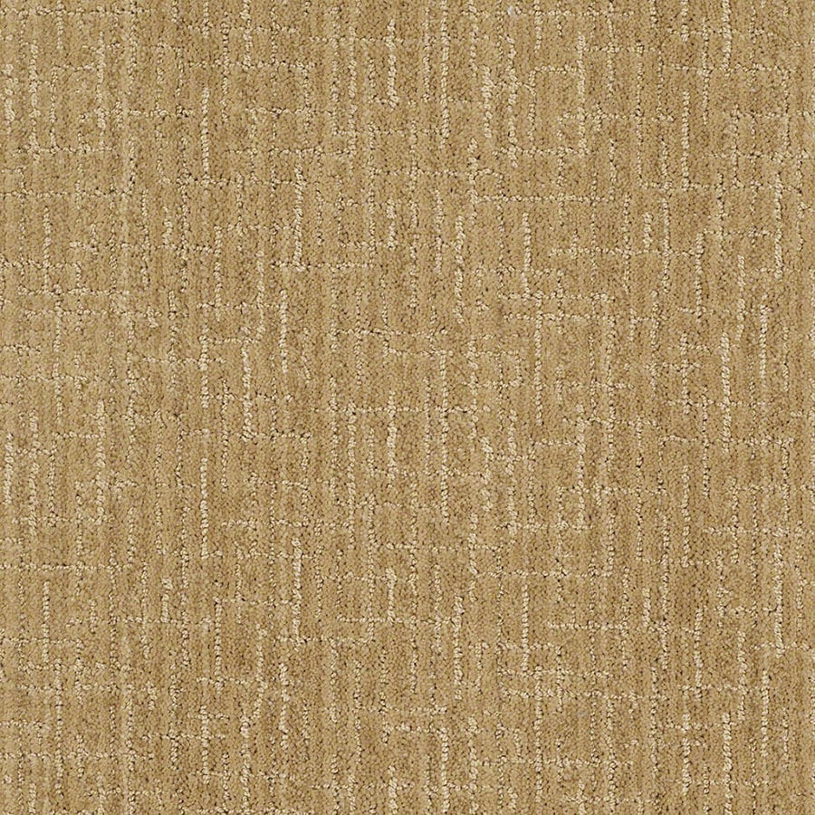 STAINMASTER Unquestionable Active Family Eggnog Cut and Loop Carpet Sample