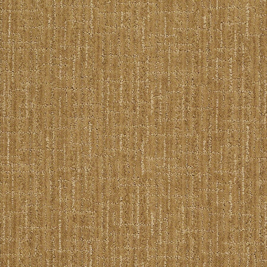 STAINMASTER Unquestionable Active Family Amber Grain Cut and Loop Carpet Sample