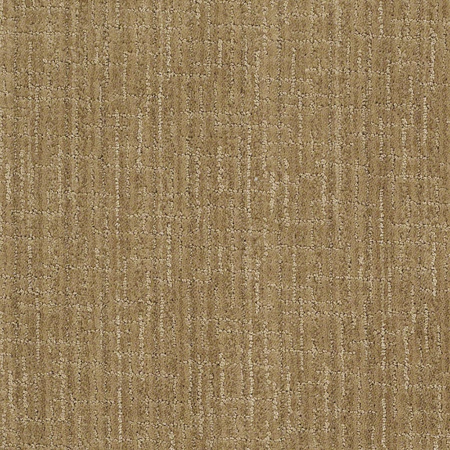STAINMASTER Unquestionable Active Family Vintage Gold Cut and Loop Carpet Sample