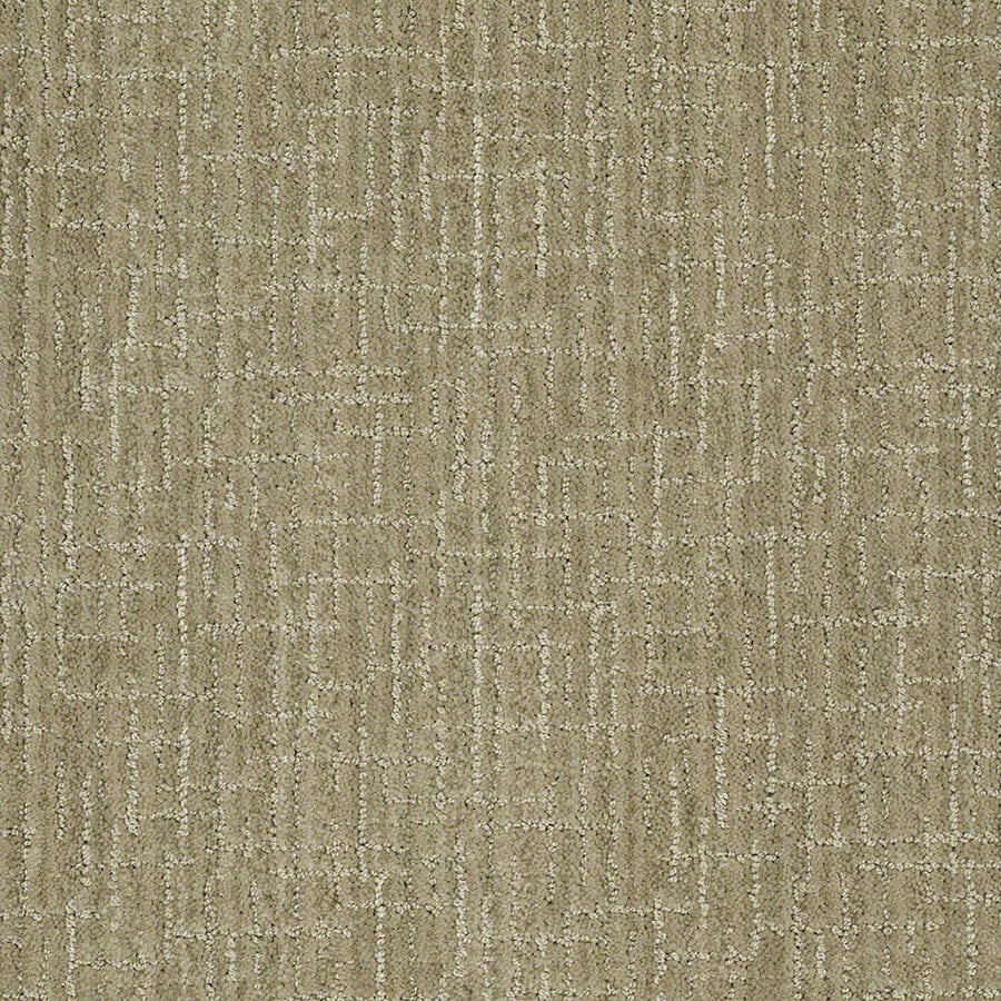 STAINMASTER Unquestionable Active Family Fresh Honeydew Cut and Loop Carpet Sample