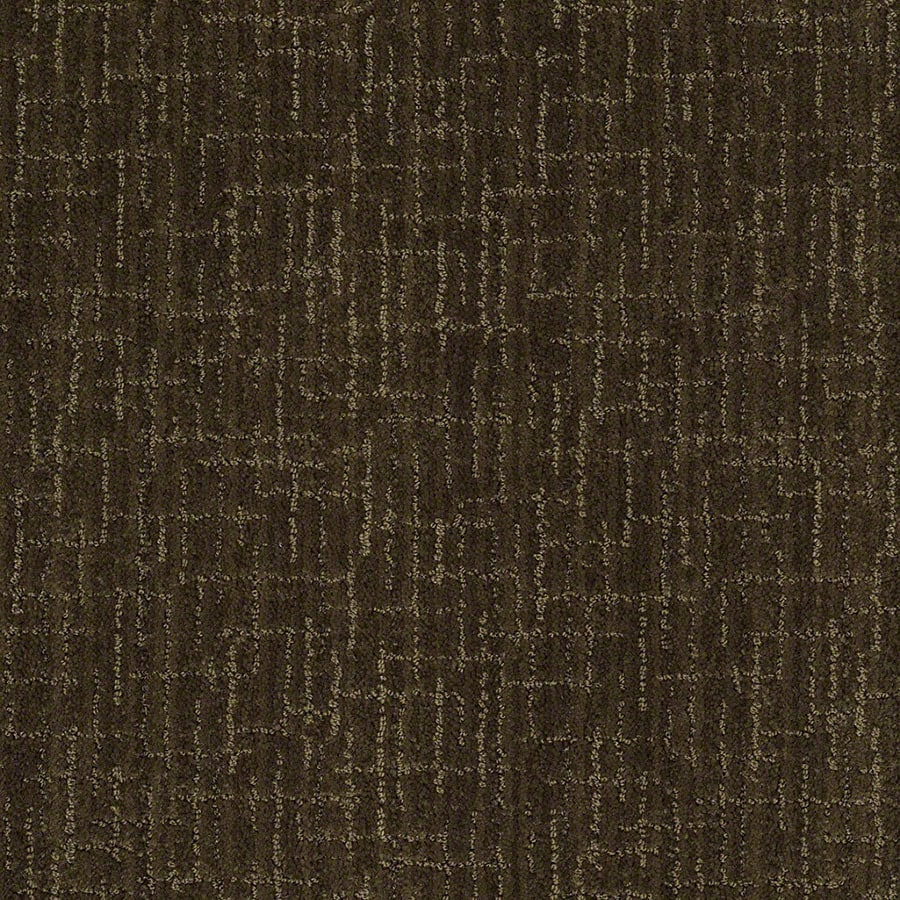 STAINMASTER Unquestionable Active Family Kelp Cut and Loop Carpet Sample