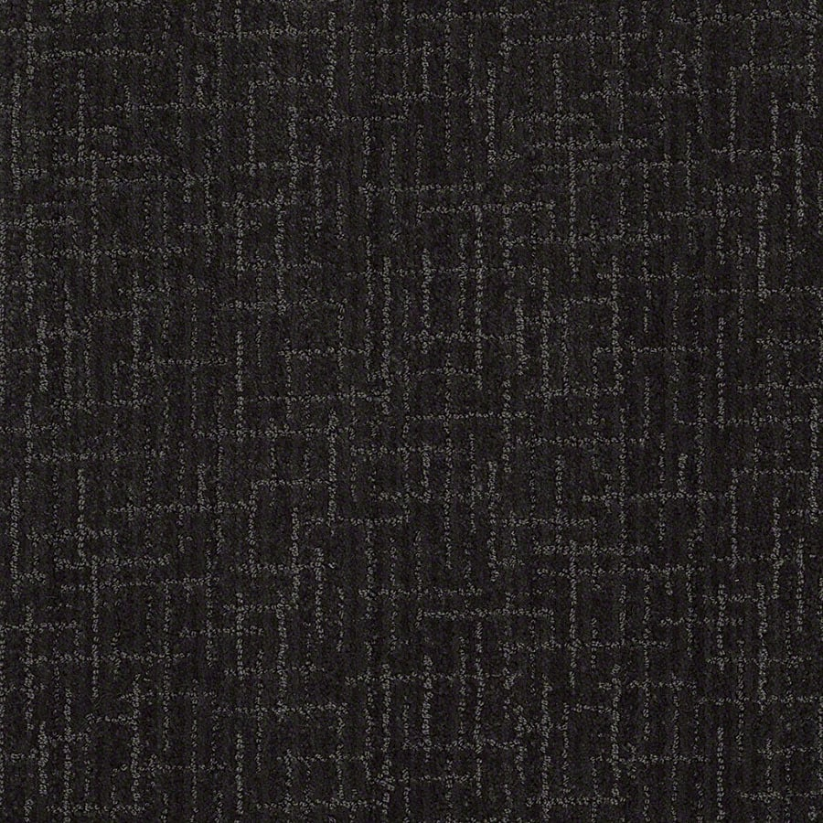 STAINMASTER Active Family Unquestionable Magic Night Carpet Sample