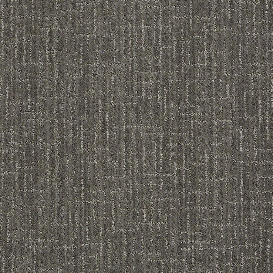 STAINMASTER Active Family Unquestionable Power Gray Carpet Sample