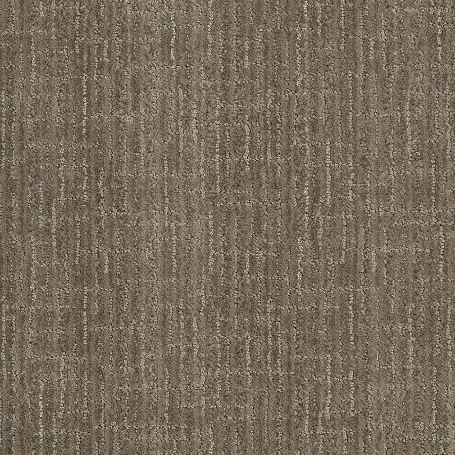 STAINMASTER Unquestionable Active Family Dolphin Cut and Loop Carpet Sample