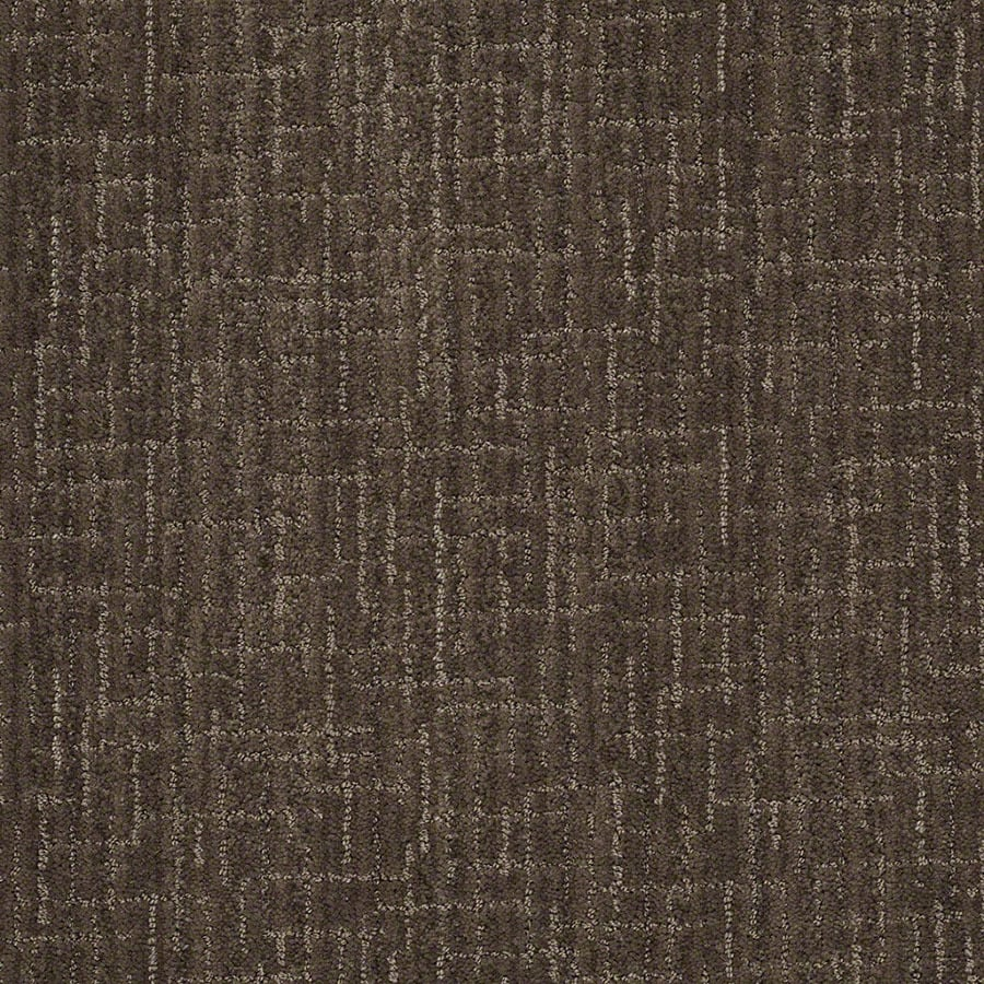 STAINMASTER Unquestionable Active Family Chinchilla Cut and Loop Carpet Sample