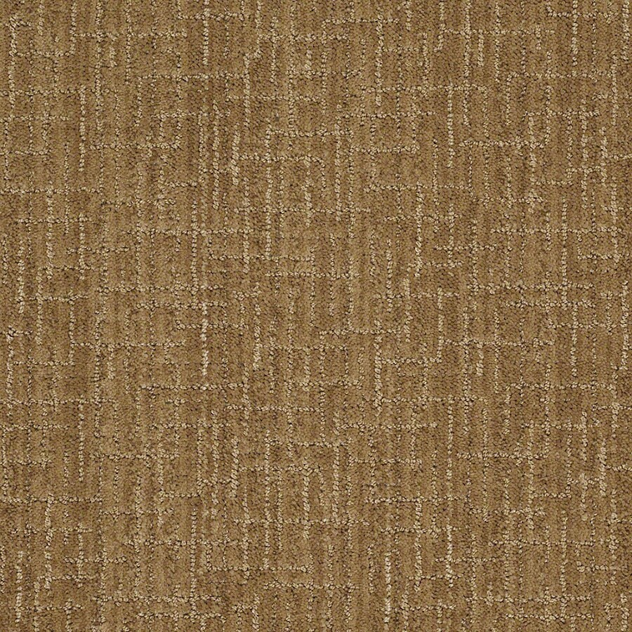 STAINMASTER Active Family Unquestionable French Horn Berber/Loop Carpet Sample