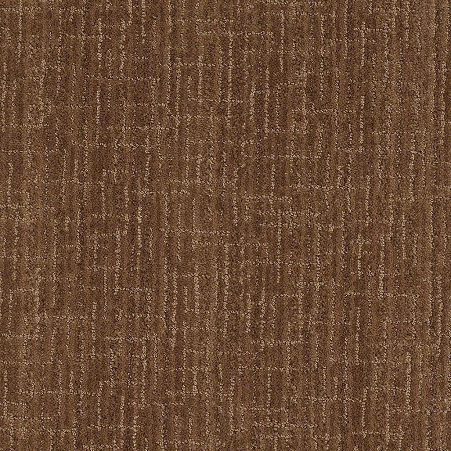 STAINMASTER Unquestionable Active Family Autumn Bark Cut and Loop Carpet Sample