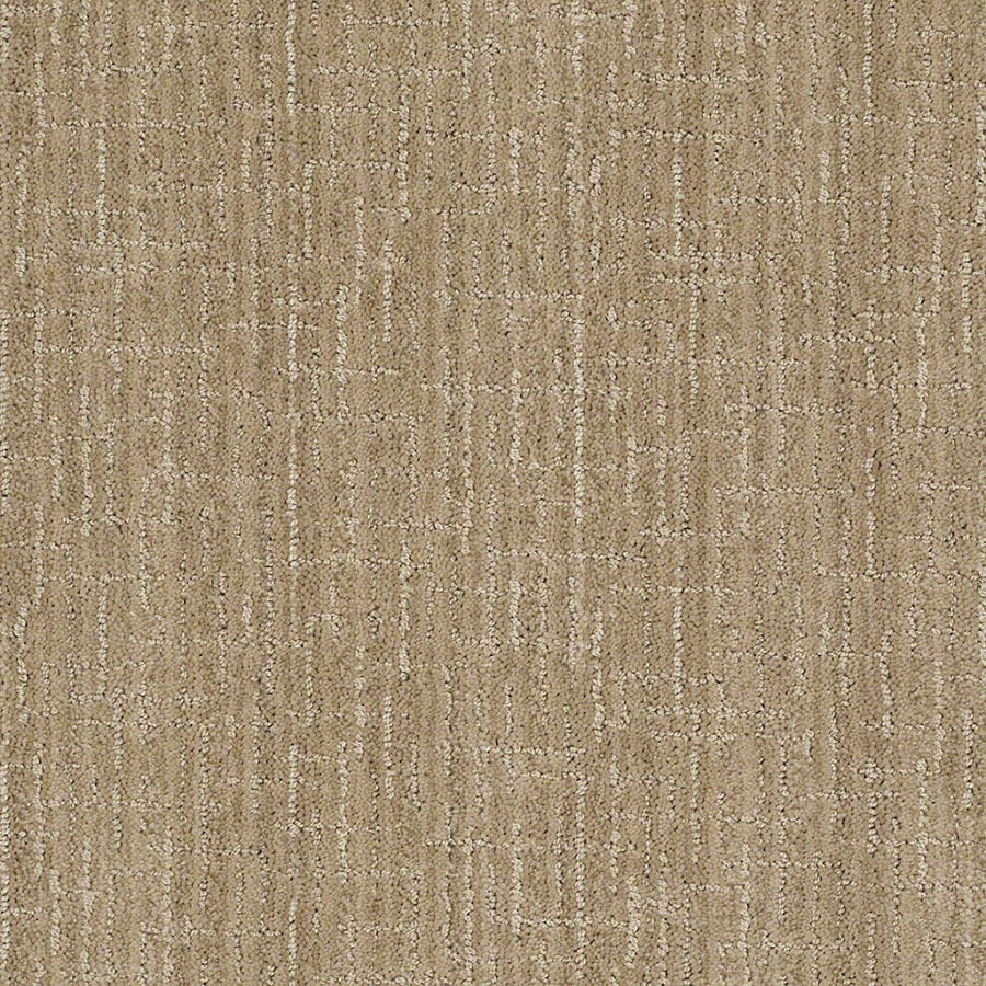 STAINMASTER Active Family Unquestionable Verona Beach Berber/Loop Carpet Sample