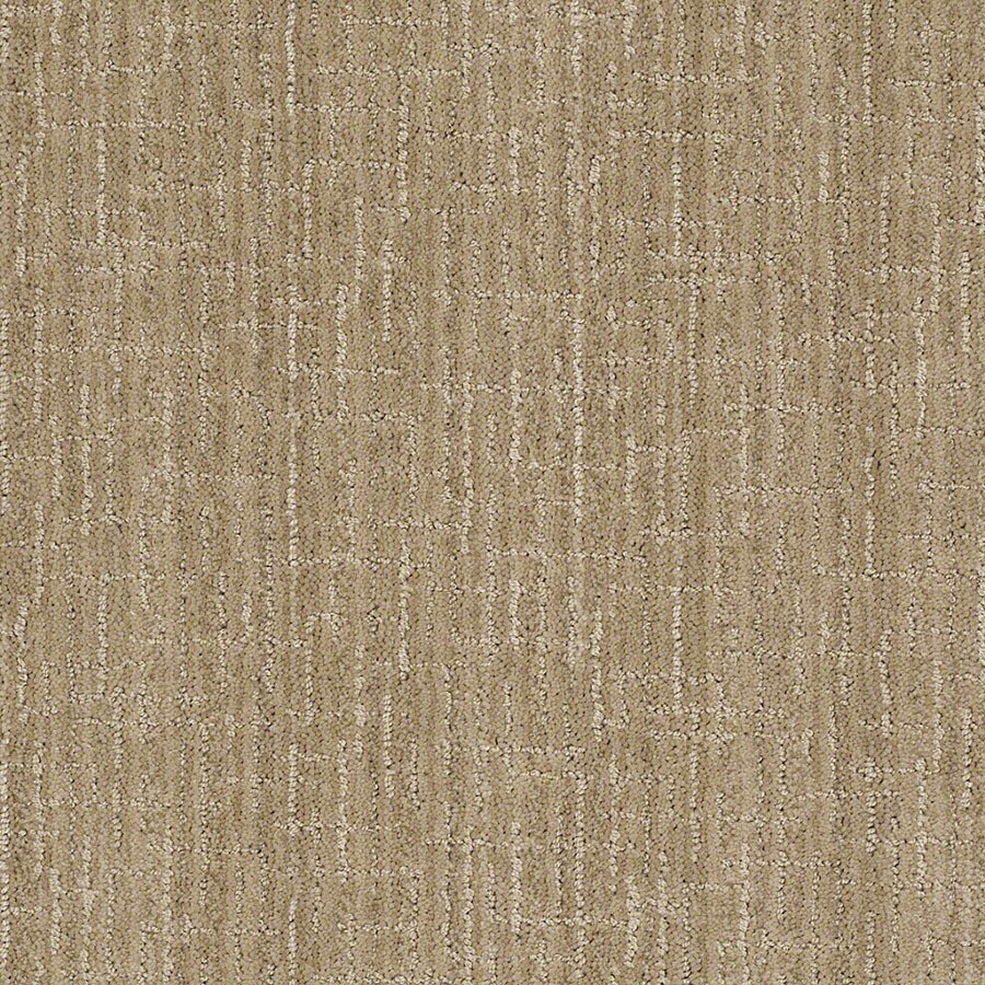 STAINMASTER Unquestionable Active Family Verona Beach Cut and Loop Carpet Sample