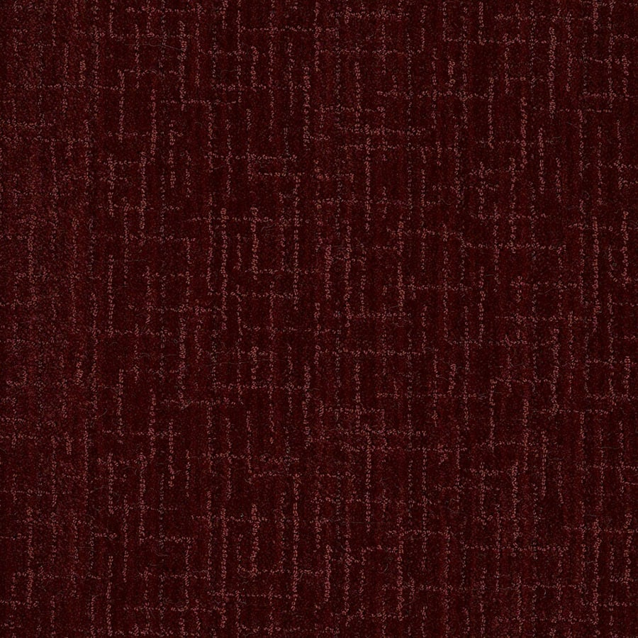 STAINMASTER Unquestionable Active Family Spiced Berry Cut and Loop Carpet Sample