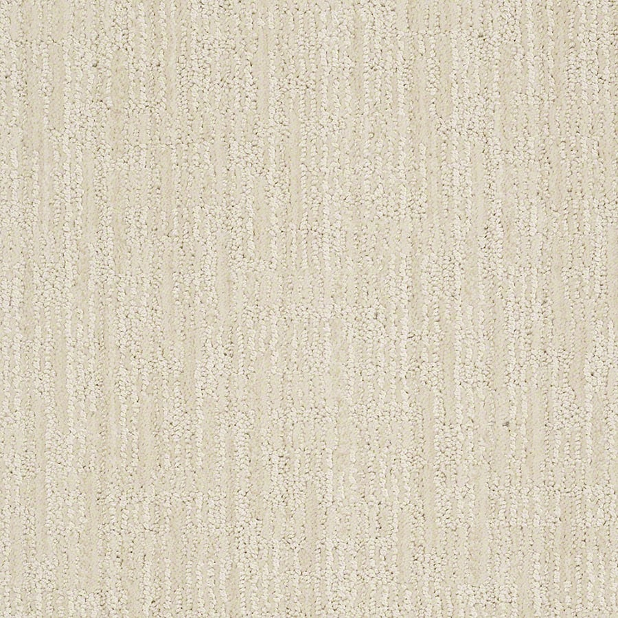 STAINMASTER Active Family Unmistakable Latte Froth Carpet Sample