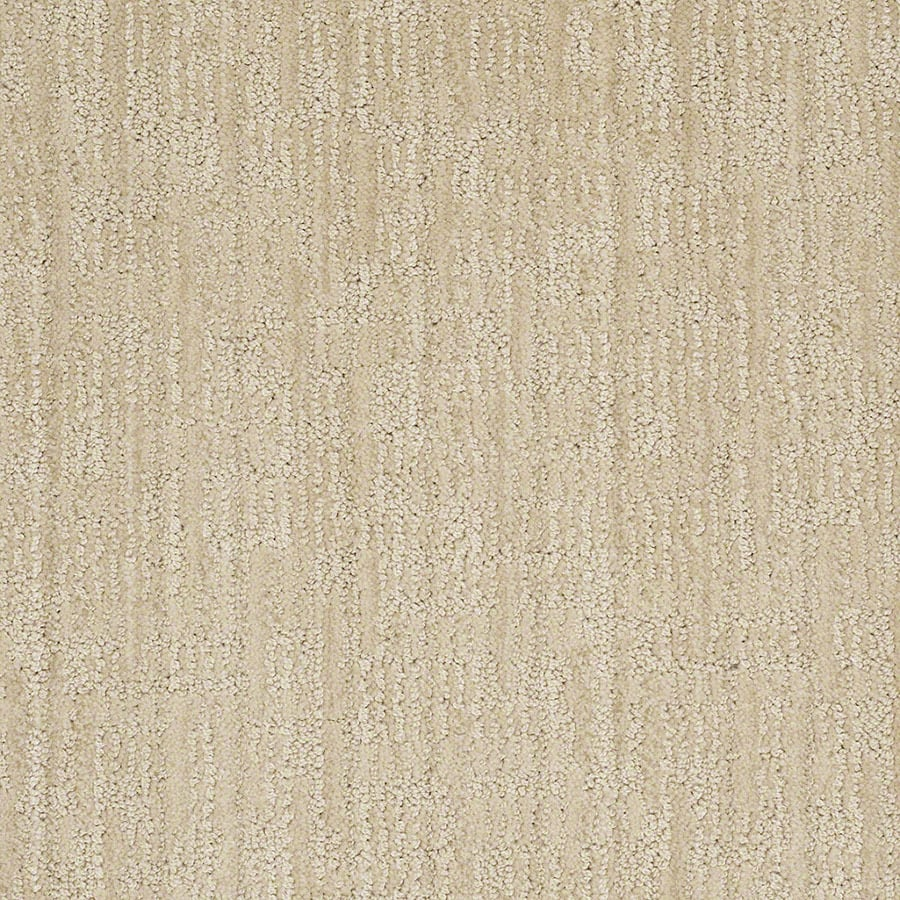 STAINMASTER Unmistakable Active Family Ivory Oats Cut and Loop Carpet Sample