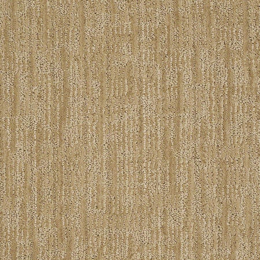 STAINMASTER Active Family Unmistakable Banana Split Carpet Sample