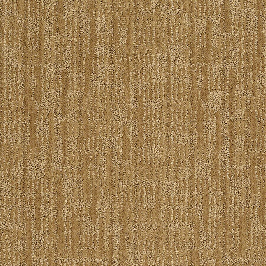 STAINMASTER Unmistakable Active Family Amber Grain Cut and Loop Carpet Sample
