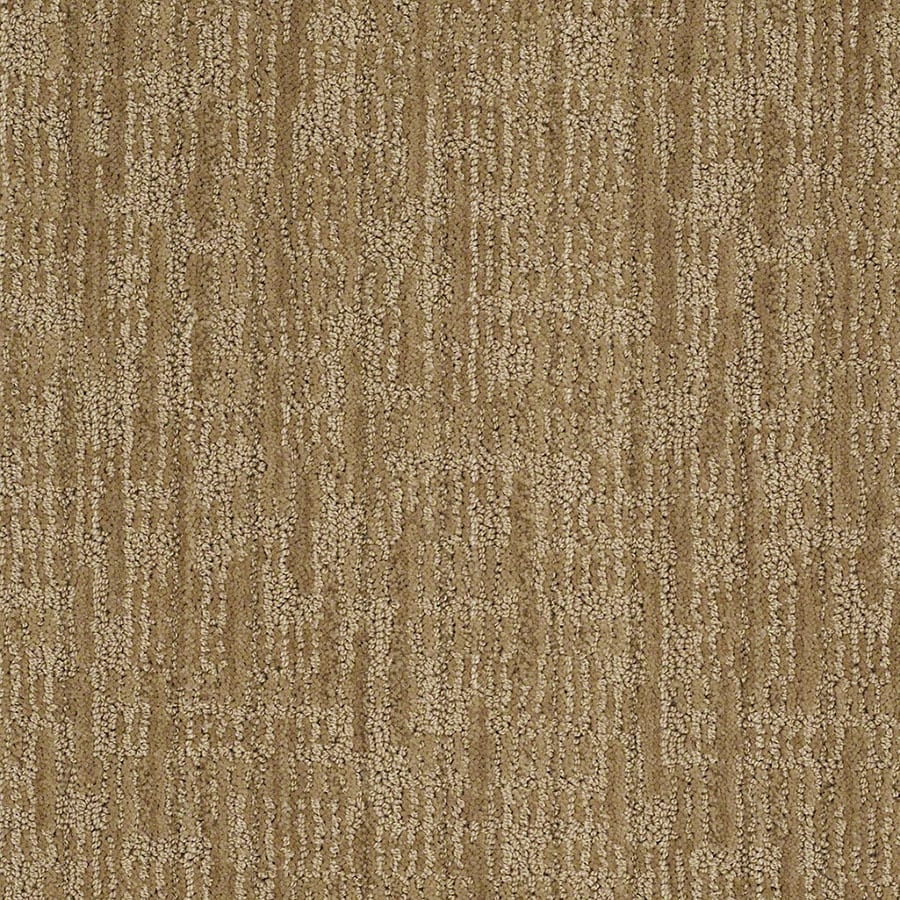 STAINMASTER Active Family Unmistakable Vintage Gold Berber/Loop Carpet Sample
