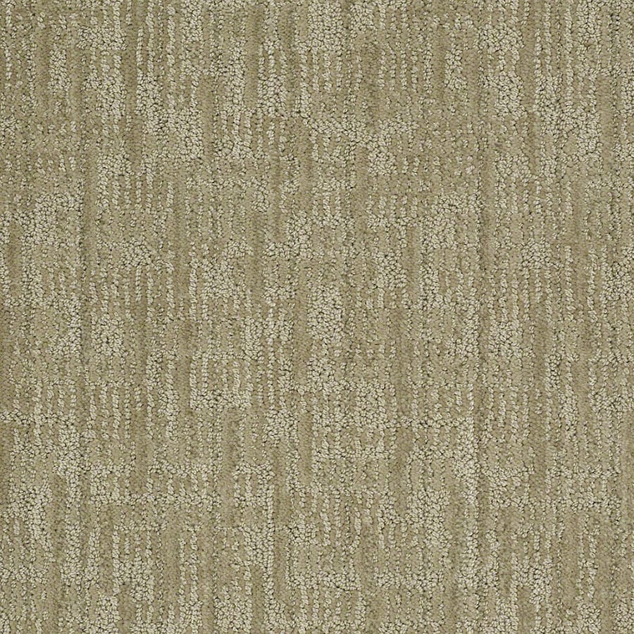 STAINMASTER Unmistakable Active Family Fresh Honeydew Cut and Loop Carpet Sample