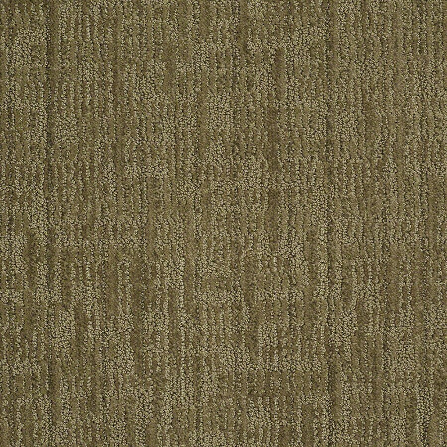STAINMASTER Active Family Unmistakable Garden Medley Carpet Sample